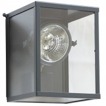Classic Wall Lamp Vitrine with Adjustable Spot